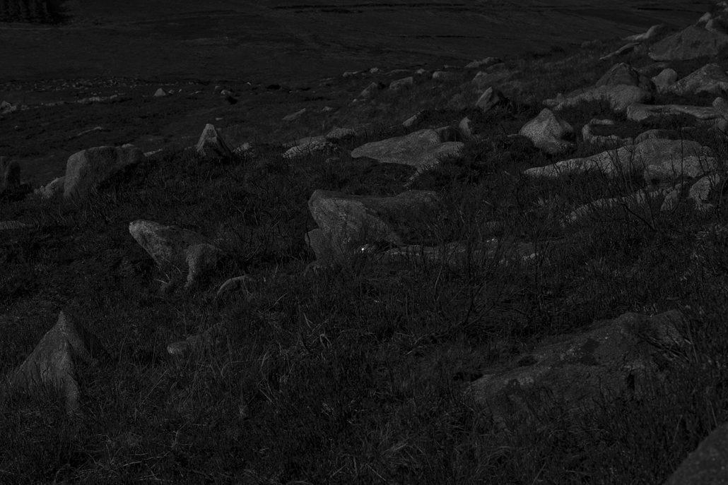 Steffi Schöne • Blackstairs Mountains